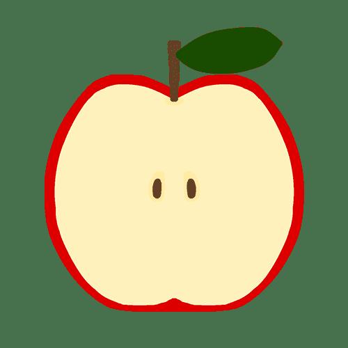 りんごの断面のイラスト
